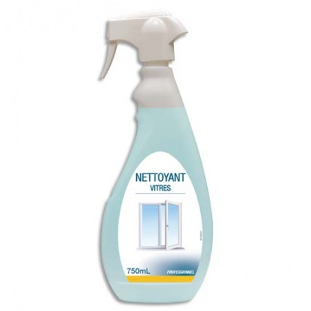 HYG SPRAY 750ML NETTOY VITRES 002061495
