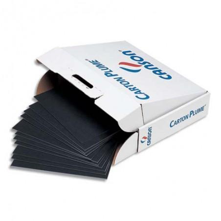 CAN FEUIL CARTON PLUM N 50X65 C205154325