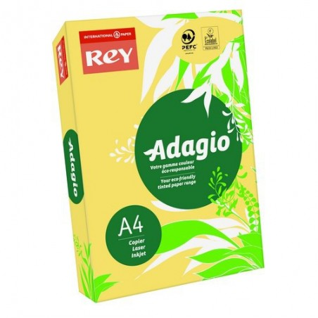 INA R/500F ADAG A4 80G BOUTON VI 8001565