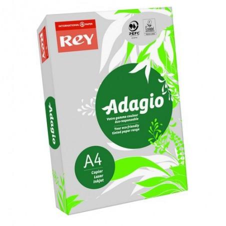 INA R/500F ADAG A4 80G GRIS VIF 8001602
