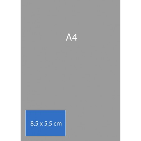 Cartes de visite 8,5 x 5,5 cm