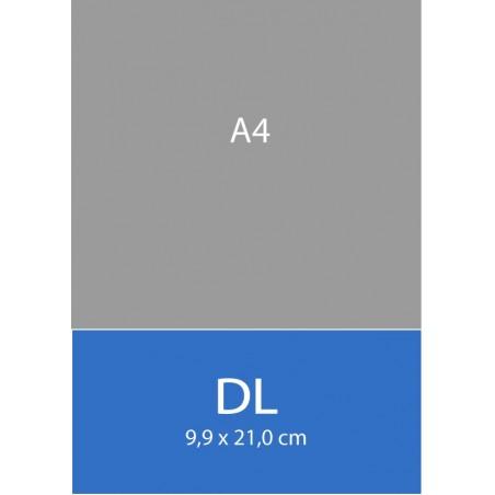 Cartes DL 9,9 x 21,0 cm
